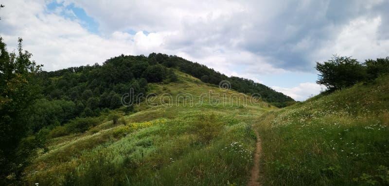 Het panorama van de berg stock foto's