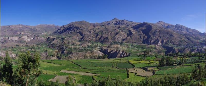 Het panorama van de Colcacanion, Peru, Zuid-Amerika Incas om Farmin te bouwen stock afbeeldingen