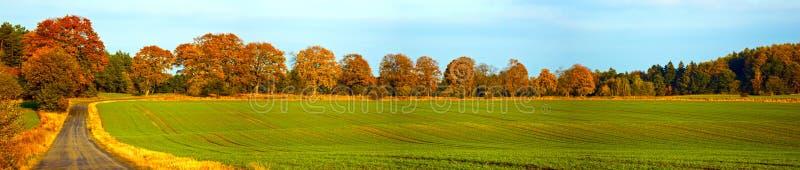 Het panorama van de herfst stock afbeeldingen