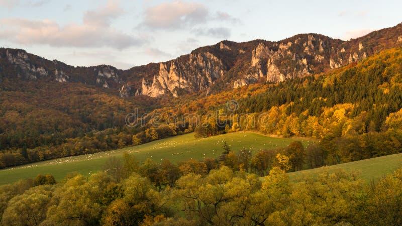 Het panorama van de de herfstaard van de Sulov-rotsen en de aard, Slowakije stock foto