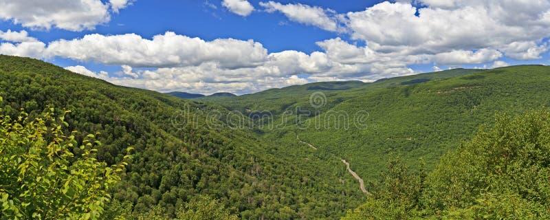 Het Panorama van de Kruidnagel van Kaaterskill stock fotografie