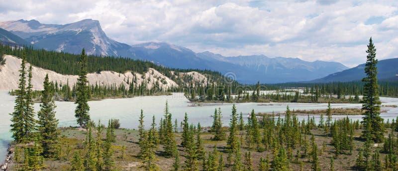 Het panorama van de Rivier van Athabasca in Alberta, Canada stock foto's
