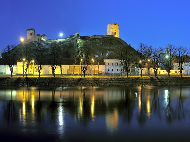 Het panorama van de Vilniusstad bij nacht stock afbeelding