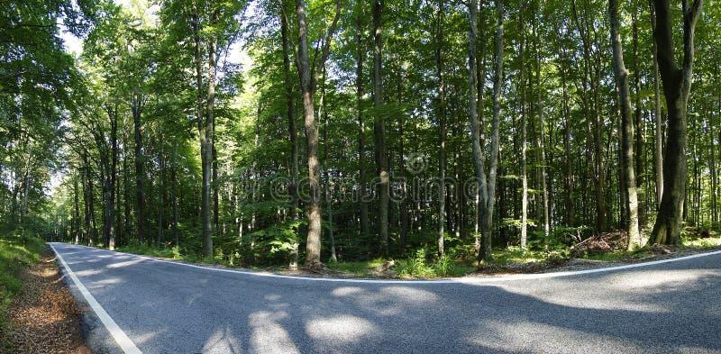 Het panorama van de weg royalty-vrije stock foto