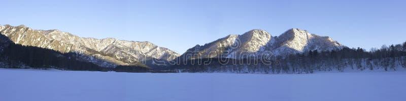 Het panorama van de winter stock foto