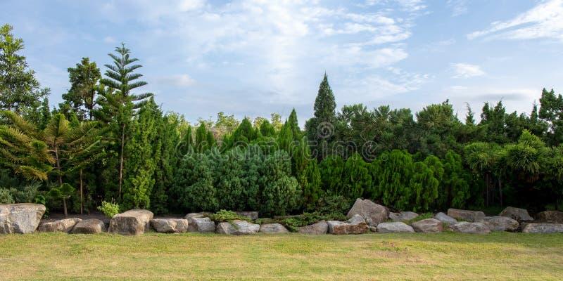 Het panorama van groene boom en de struik met rotsdecoratie in openbaar park tuinieren en blauwe hemel royalty-vrije stock afbeelding