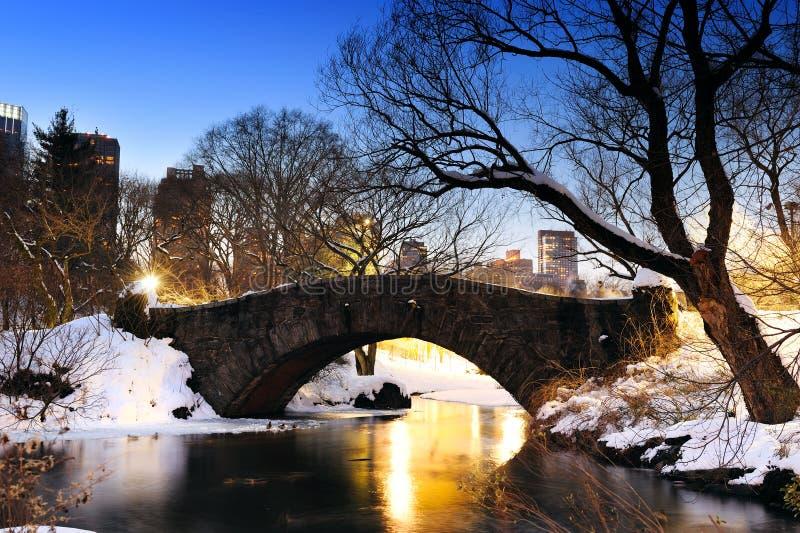 Het panorama van het Central Park van Manhattan van de Stad van New York stock foto's