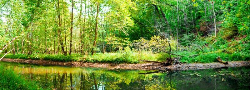Het Panorama van het meer stock fotografie