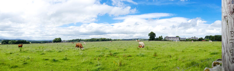 Het Panorama van het plattelandslandbouwbedrijf royalty-vrije stock foto
