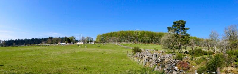 Het Panorama van het plattelandslandbouwbedrijf royalty-vrije stock foto's
