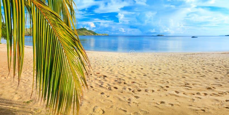 Het panorama van het strand royalty-vrije stock afbeelding