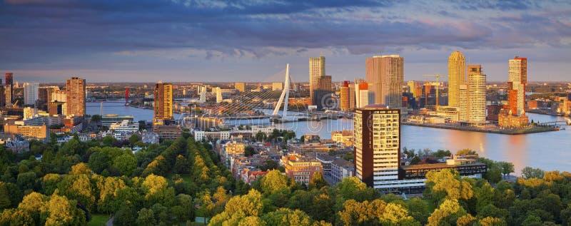 Het Panorama van Rotterdam stock fotografie