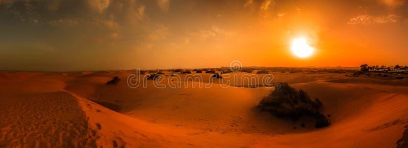 Het panorama van zandduinen royalty-vrije stock fotografie