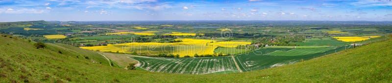 Het het panoramazuiden van de zomergebieden verslaat Sussex Zuidelijk Engeland het UK stock foto's