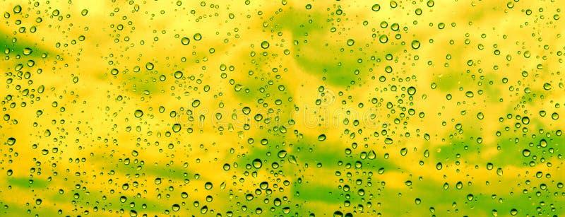 Het panoramische ontwerp van regendruppels stock illustratie