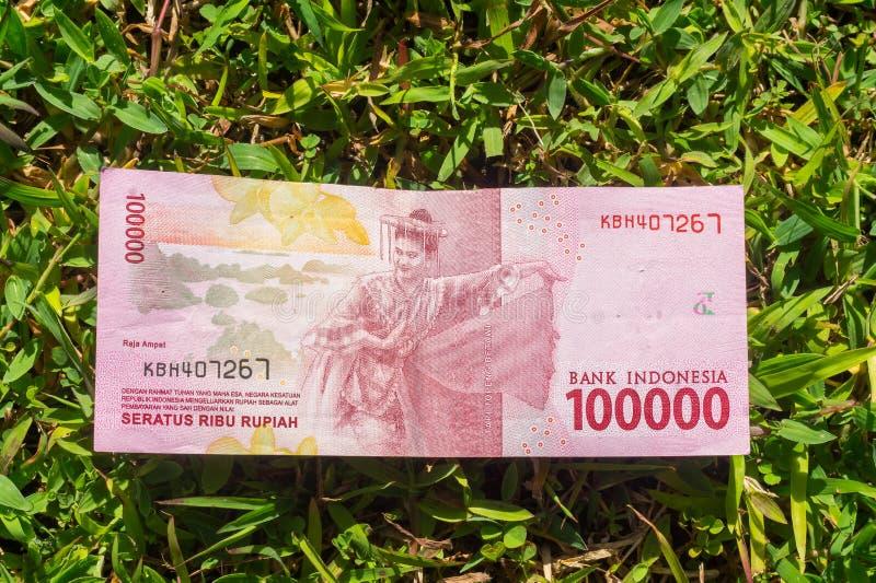 Het papiergeld van de honderdduizendroepie op groen gras royalty-vrije stock afbeelding
