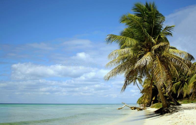Het paradijs van Caribean