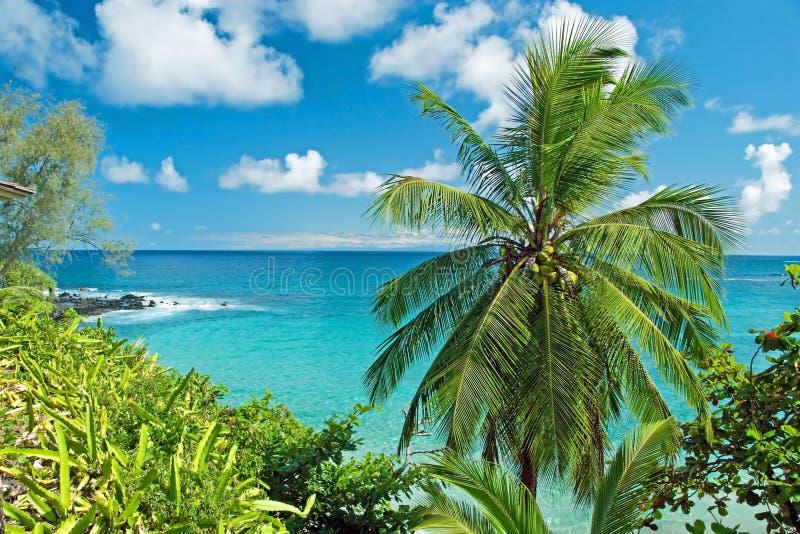 Het paradijs van Hawaï op het eiland van Maui royalty-vrije stock foto