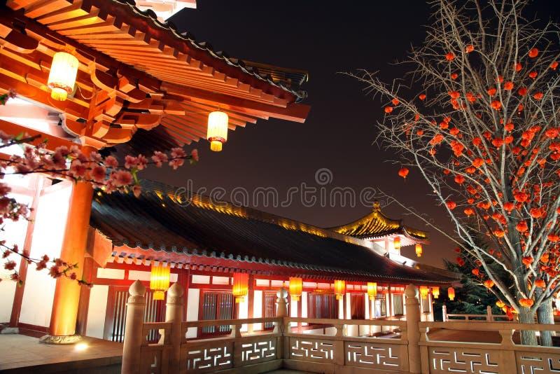 Het Paradijs van Tang royalty-vrije stock afbeelding
