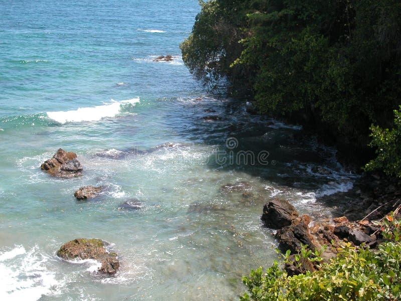 Het Paradijs van Trini stock foto