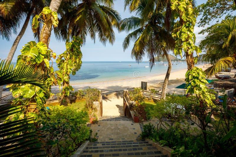 Het paradijsstrand in Bemoeiziek is, Madagascar royalty-vrije stock foto's