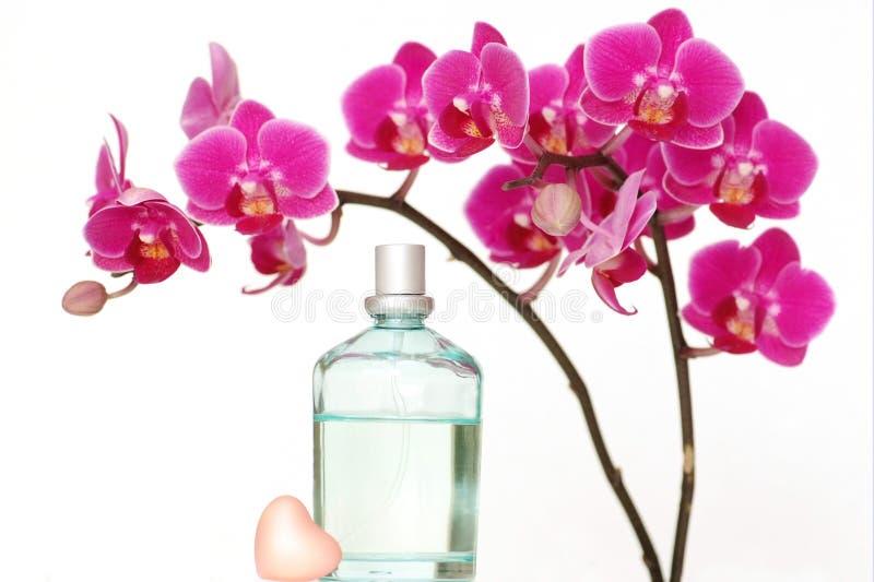 Het parfum van de orchidee royalty-vrije stock foto's