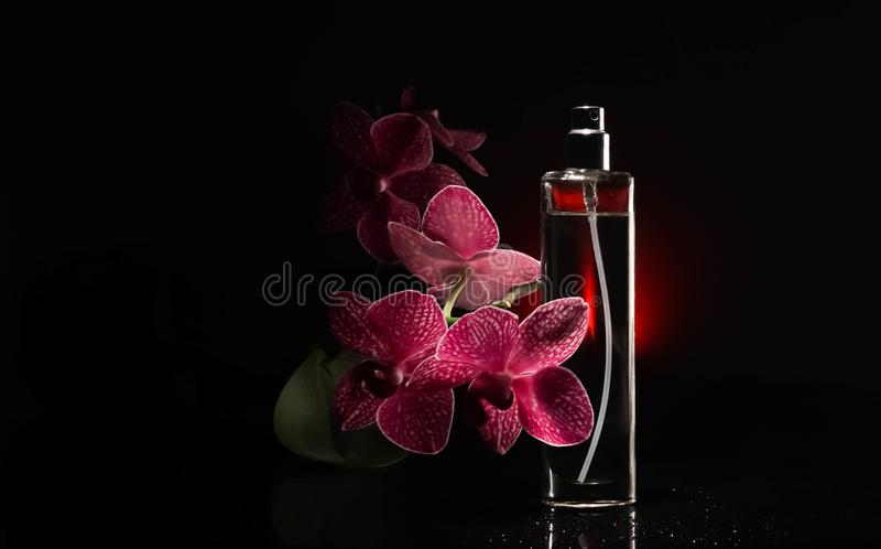Het parfum, vonk, schoonheidsmiddel, aroma, verse manier, dalingen, orchidee bloeit royalty-vrije stock afbeelding