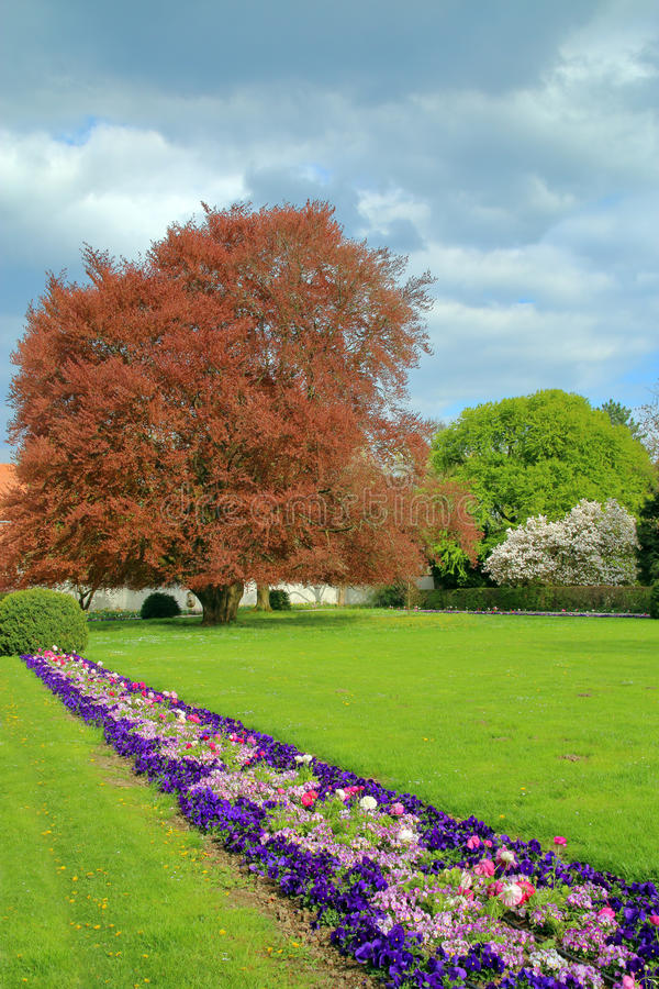 Het park in de lente na een onweer stock foto