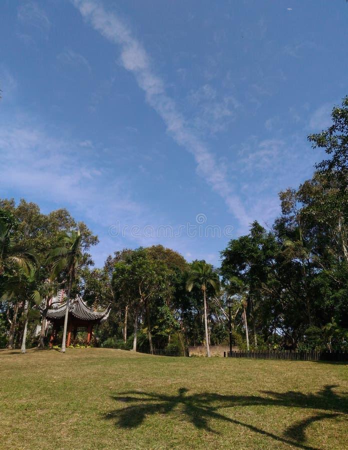 Het park met blauwe hemel royalty-vrije stock afbeelding