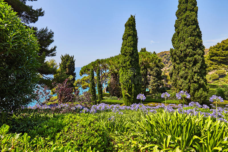 Het park op de Mediterrane kust in Spanje royalty-vrije stock fotografie