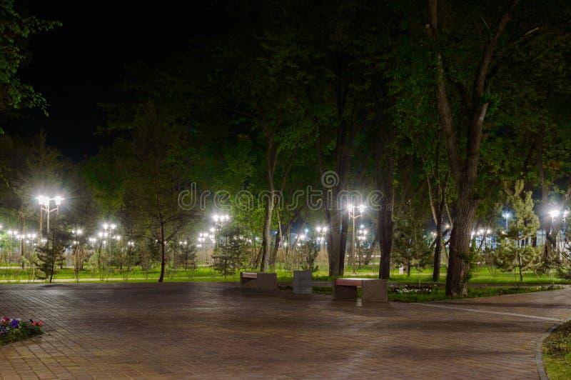 Het park op Dijk van linkerkant trekt rivier in Rostov op Don aan De mening van de nachtverlichting royalty-vrije stock foto's