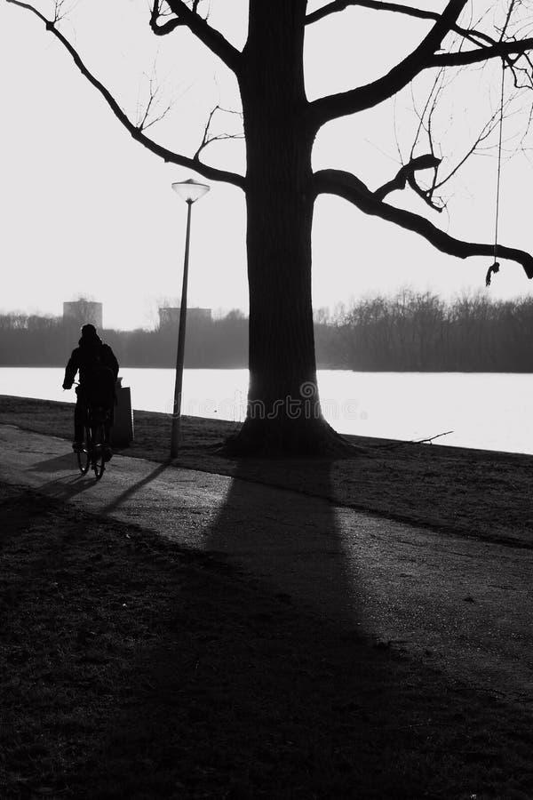 Het park van Amsterdam en openlucht stock afbeelding