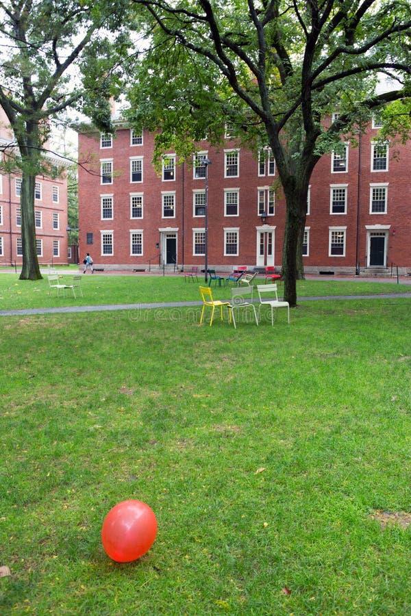 Het park van Cambridge op de universiteit royalty-vrije stock fotografie