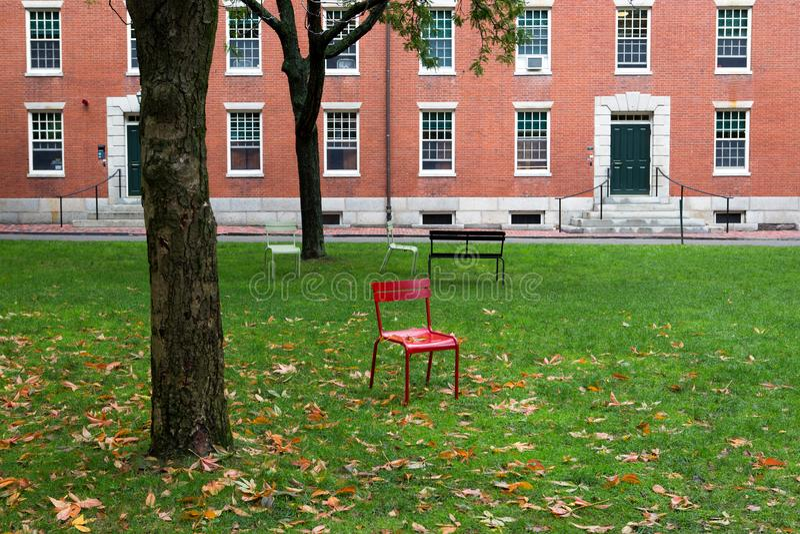Het park van Cambridge op de universiteit stock fotografie