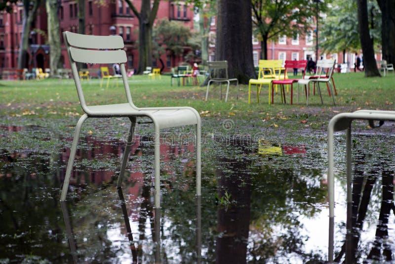 Het park van Cambridge op de universiteit stock foto