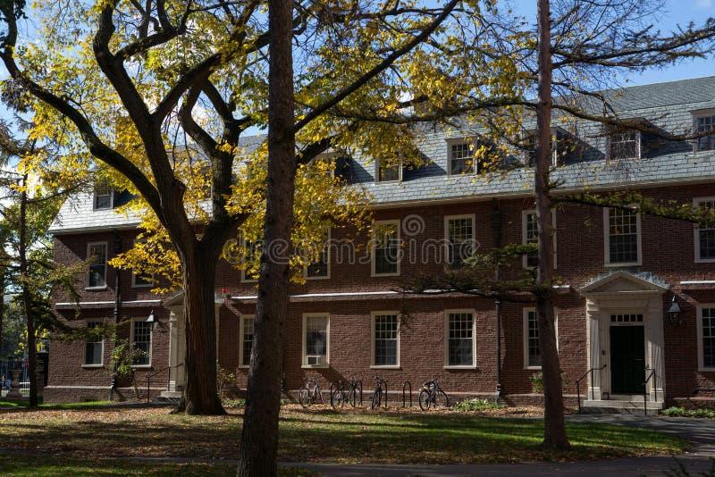 Het park van Cambridge op de universiteit royalty-vrije stock afbeeldingen