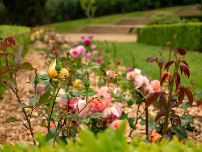 Het Park van Cervantes in Barcelona royalty-vrije stock foto's
