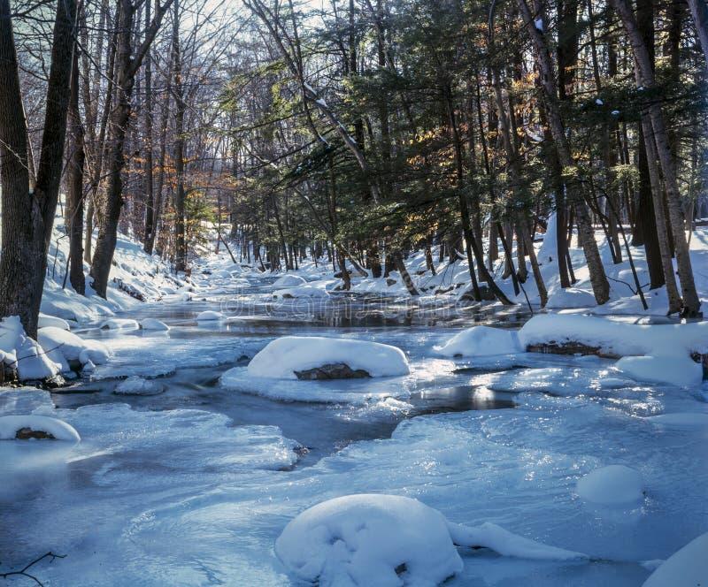 Het Park van de Harrimanstaat, de Staat van New York stock afbeelding
