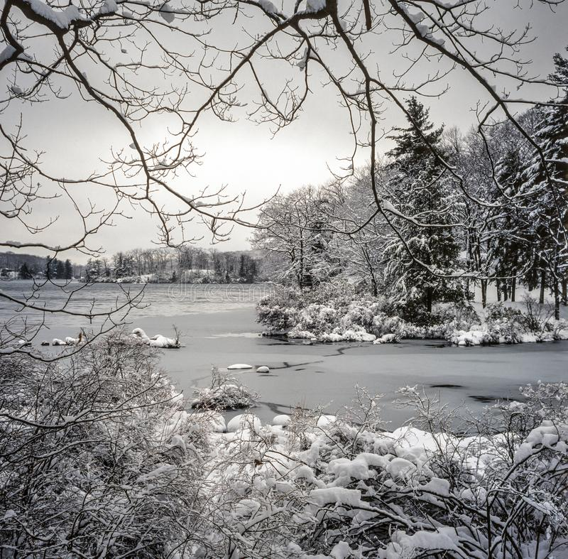 Het Park van de Harrimanstaat, de winter van de Staat van New York royalty-vrije stock foto