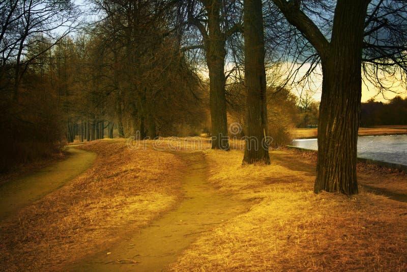 Het park van de herfst royalty-vrije stock foto