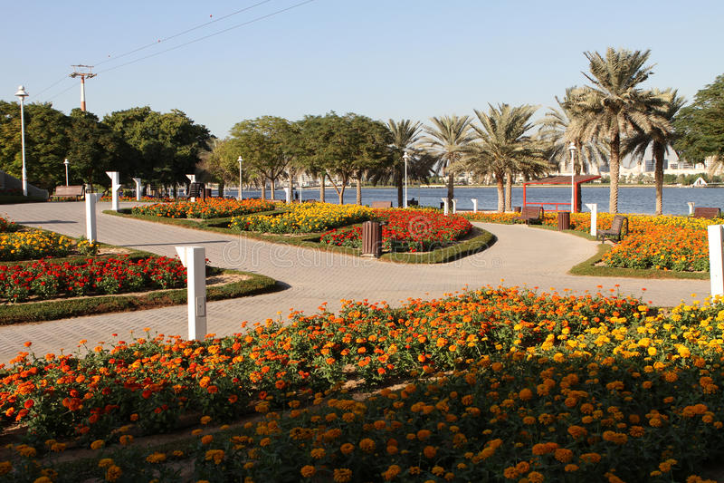 Het Park van de Kreek van Doubai royalty-vrije stock foto's