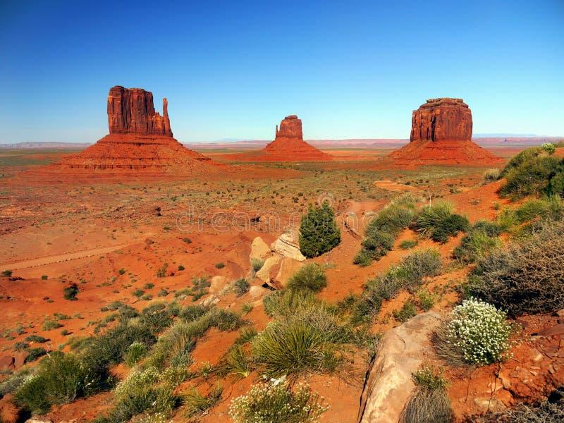 Het Park van de monumentenvallei, Landschap Arizona, Utah stock foto