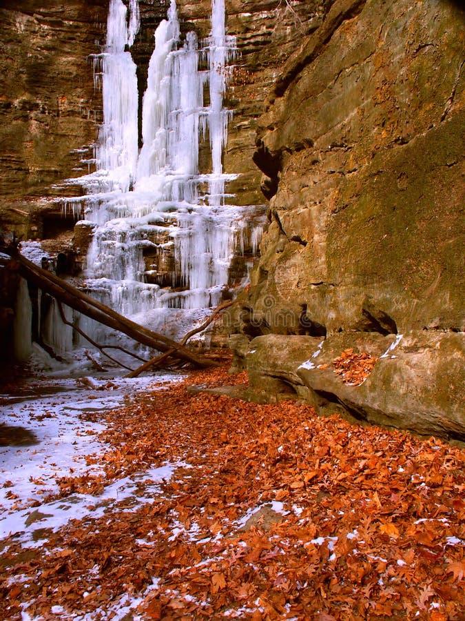 Het Park van de Staat van Matthiessen - Illinois stock afbeeldingen