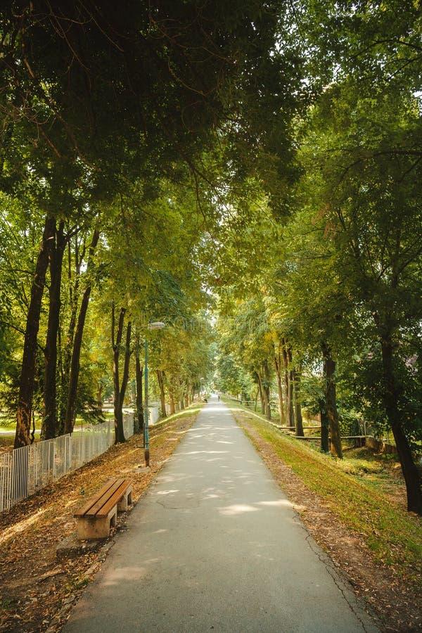 Het Park van de stadsborstwering royalty-vrije stock foto's