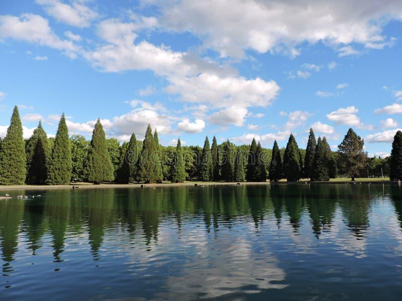 Het park van de Westmorelandstad stock foto's