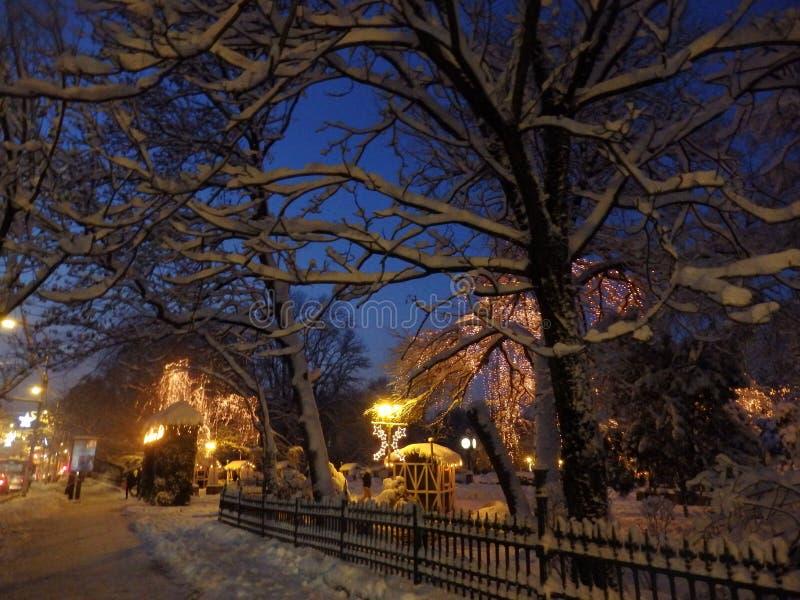 Het park van de winter royalty-vrije stock afbeelding
