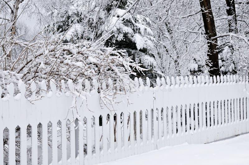 Het park van de winter royalty-vrije stock foto's