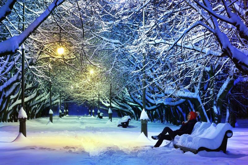Het park van de winter bij nacht stock afbeelding
