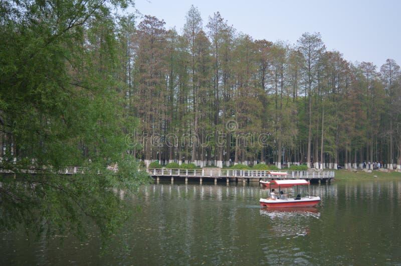 Het Park van de Wuhanbevrijding royalty-vrije stock afbeelding