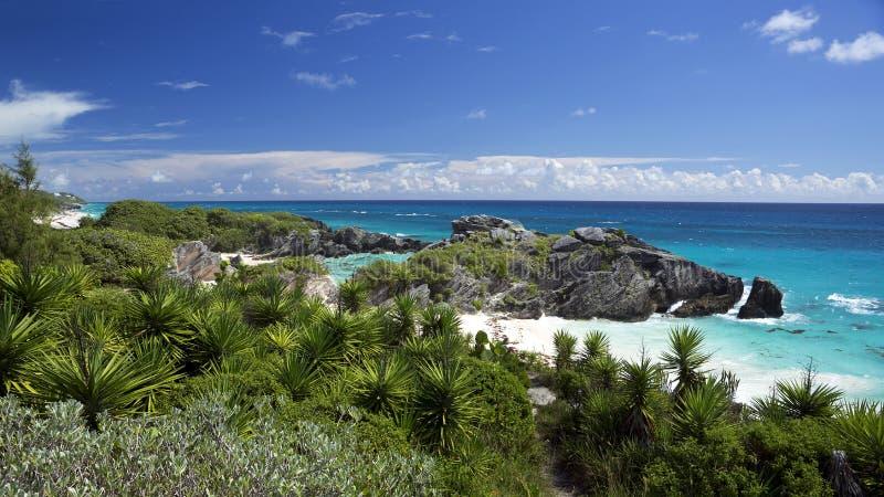 Het Park van de zuidenkust - Warwick Parish, de Bermudas stock afbeelding